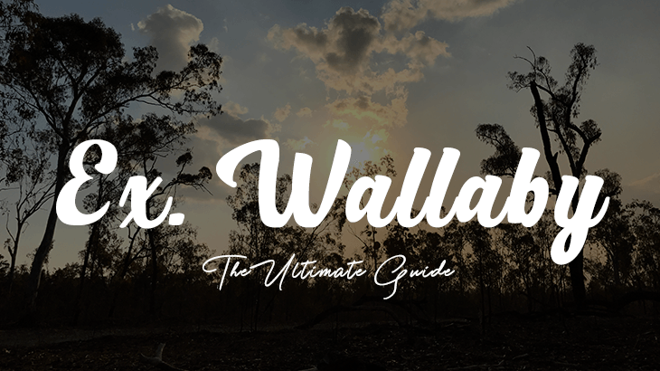 exercise wallaby guide